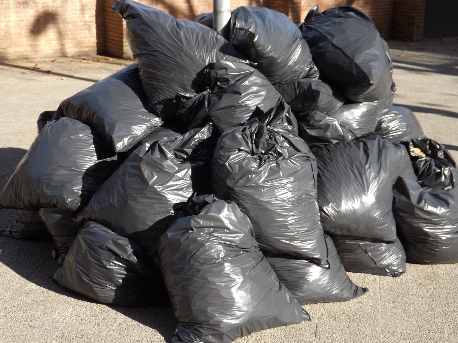 garbage-bags-waste-plastic-pollution-environment